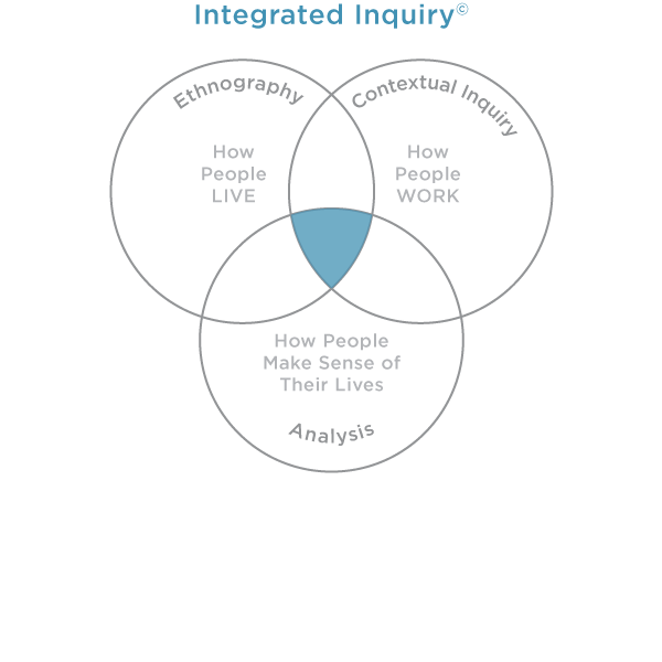integrated inquiry diagram